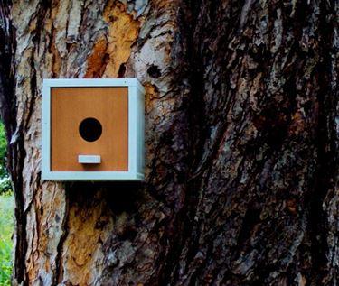 Una casetta per uccelli quadrata