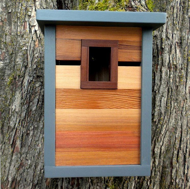 Casetta per uccelli fissata ad un albero