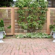 divisori giardino