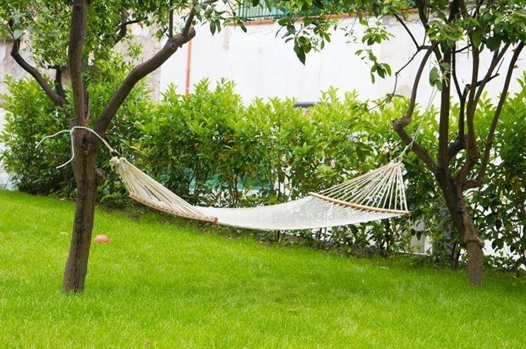 Amaca in moderno giardino cittadino