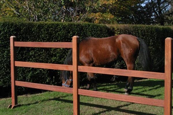 Recinzioni in legno recinzioni recinzioni legno for Recinto in legno