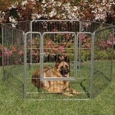 Recinzione Per Cani Giardino.Recinzioni Per Cani Recinzioni