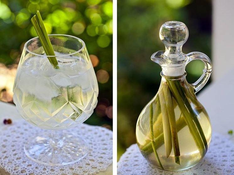 Bevande e tisane di citronella