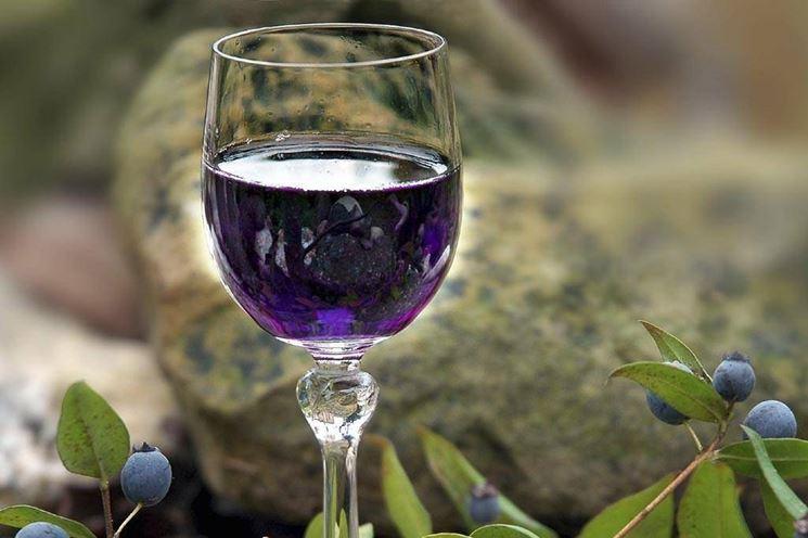 Il tipico liquore di mirto � preparato macerando le bacche di mirto nell�alcool ed aggiungendo lo zucchero.