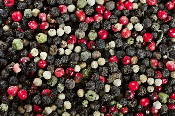 Grani mescolati di pepe rosso, bianco e nero