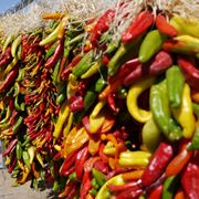 peperoncini messicani