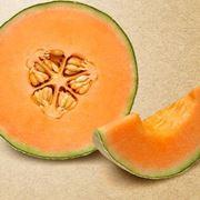 coltivare meloni