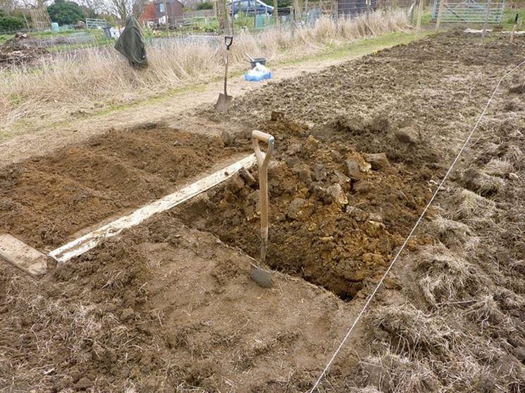 Preparazione del terreno alla coltivazione