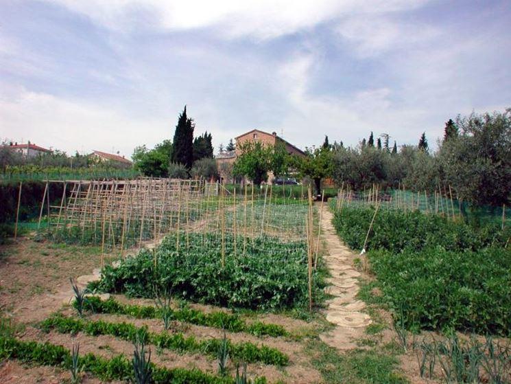 Orto e giardino ortaggi caratteristiche dell 39 orto - L orto in giardino ...