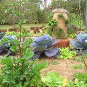 Esempio di orto giardino