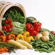 I prodotti dell'orto