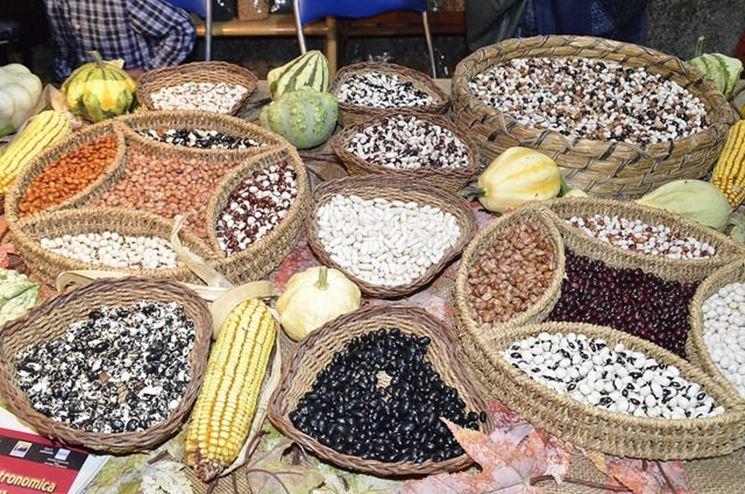 varietà di fagioli