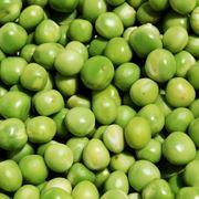 Piselli legumi