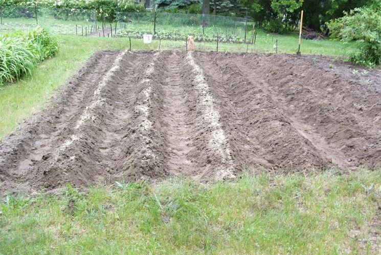 Solchi per semina patate