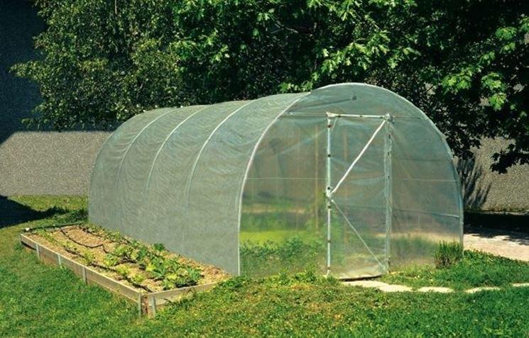 Casa immobiliare accessori serre per ortaggi prezzi for Vendita piante orto
