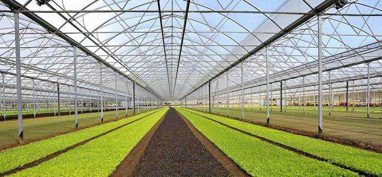 serra agricola campagna
