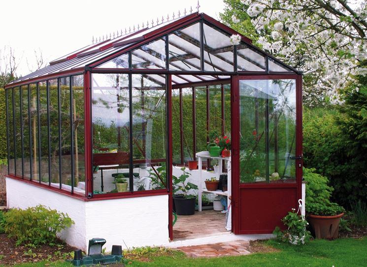 Vendita piante on line for Piante da orto vendita online