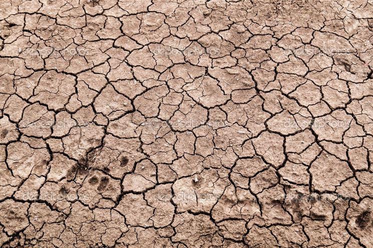 Screpolature superficiali dei terreni argillosi
