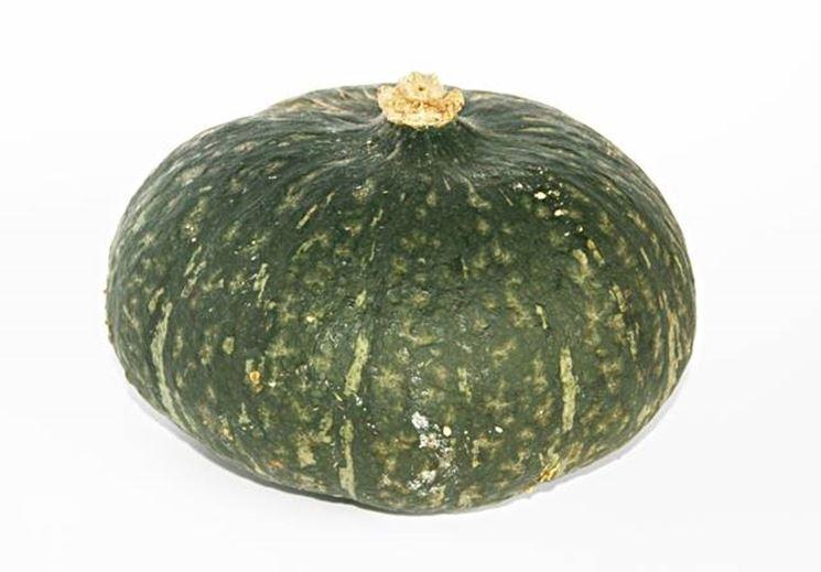 La zucca verde