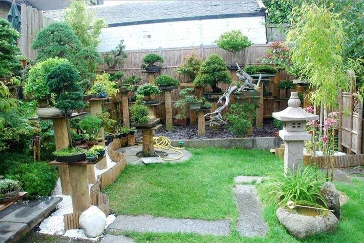 Giardino con bonsai da esterno