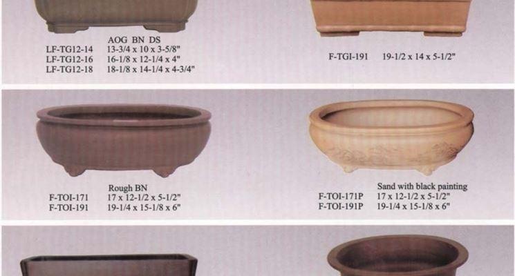 Tipici vasi per bonsai