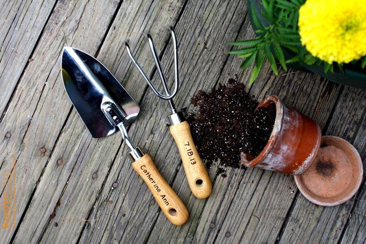 Un set di strumenti per la potatura dei bonsai