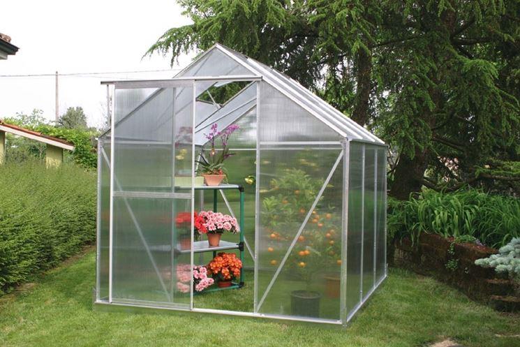 Una piccola serra da giardino, adatta alle orchidee