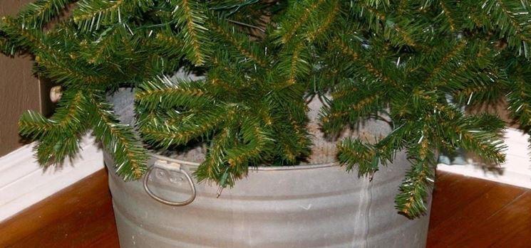 Come curare un albero di natale vero