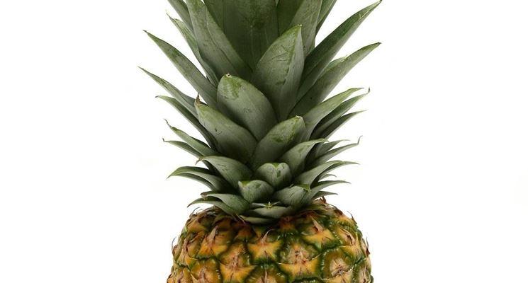 Taglio delle foglie di ananas