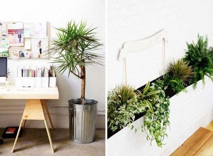 Arredare con le piante da interno