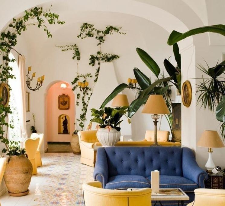 Piante casa piante appartamento caratteristiche delle - Piante rampicanti da interno ...