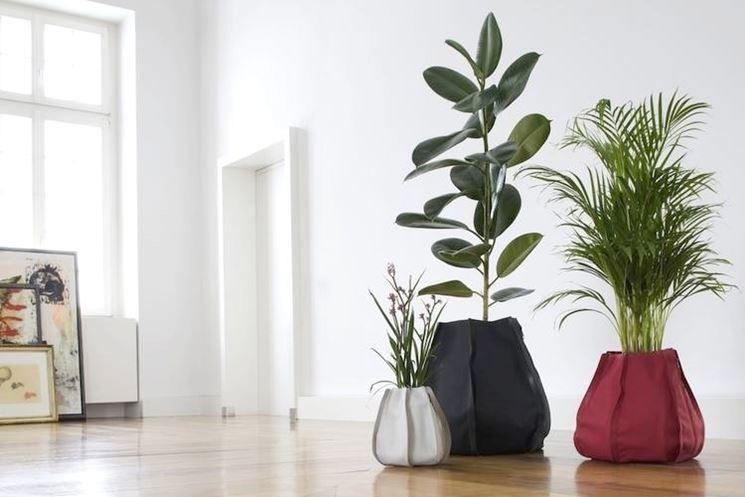 Vasi di piante in casa