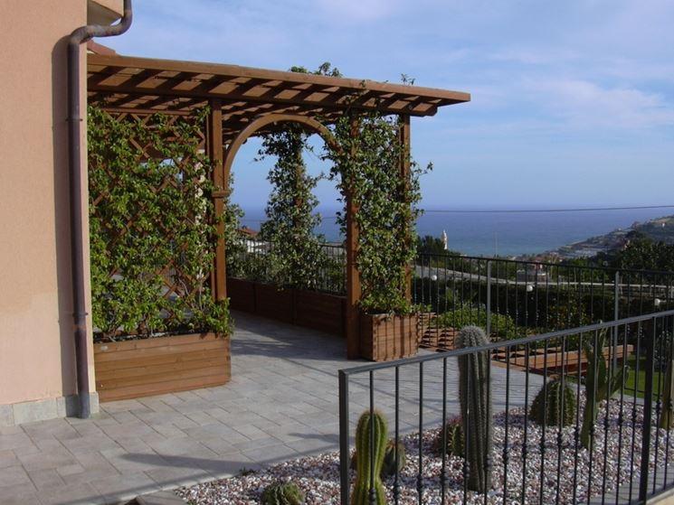Coperture terrazzo piante da terrazzo tipologie di for Piante per terrazzi