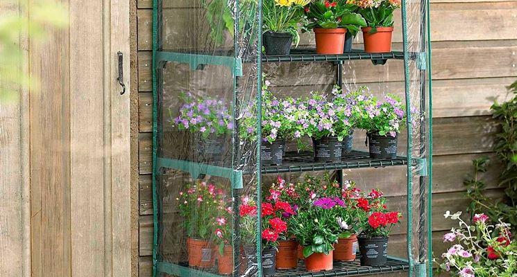 Le applicazioni di una piccola serra da balcone sono molteplici