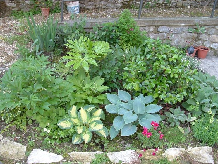 un tipico esempio di giardino di piante nane