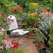 balconcino con piante