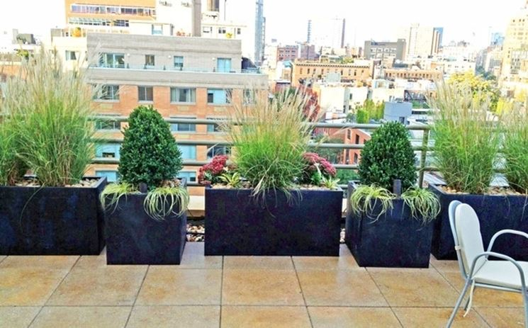 Grandi vasi sul terrazzo