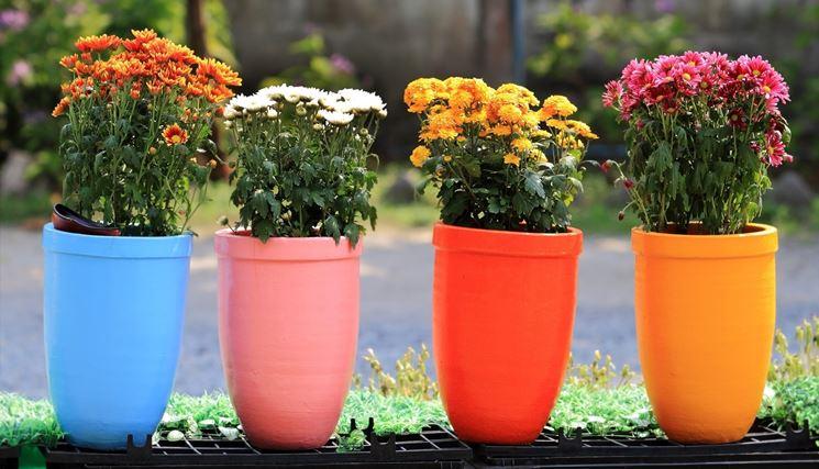 foto vasi fiori