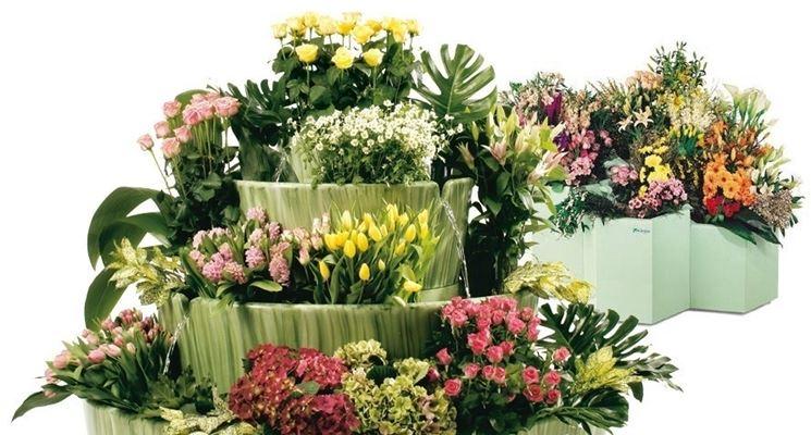 2 tipi di vasi per fiori