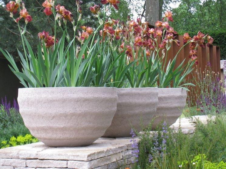 Vaso fiori piante da terrazzo vaso di fiori - Fiori da esterno primaverili ...