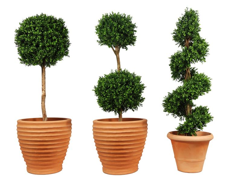 Alberi artificiali piante finte piante da appartamento for Alberelli da vaso per esterno
