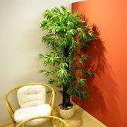 La pianta nella foto è un bambù da 190 cm con tronco in vero legno e foglie in poliestere