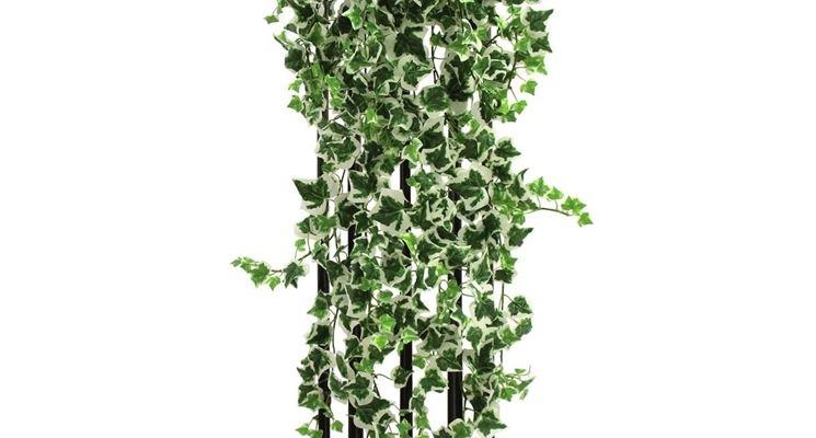 Edera finta piante finte edera artificiale per for Edera finta ikea