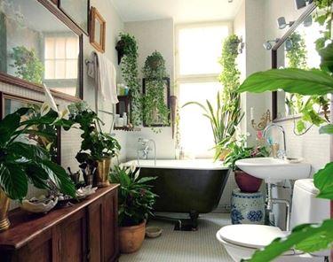 Piante finte da arredo che decorano il bagno