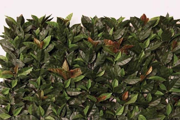 piante finte da esterno piante finte piante da esterno