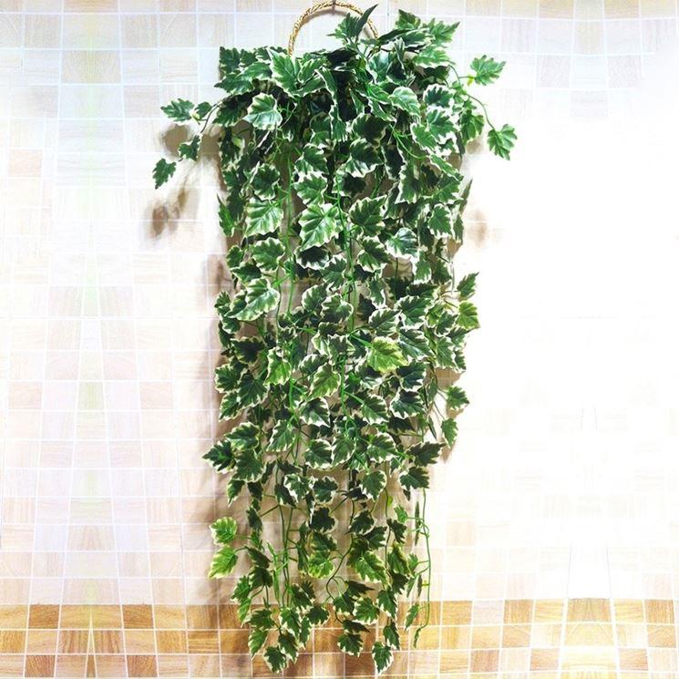 Casa immobiliare accessori piante rampicanti da balcone for Edera finta leroy merlin