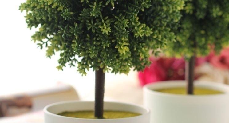 Piante grasse finte piante finte come scegliere le - Decorazioni fiori finti ...