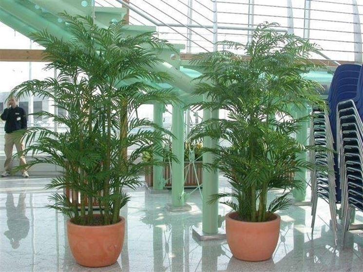 Piante Artificiali Da Esterno : Piante ornamentali finte caratteristiche