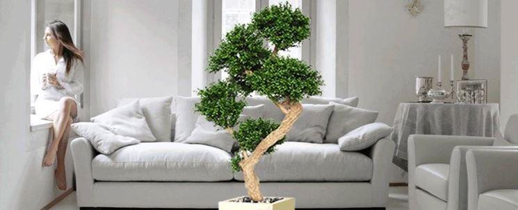piante da appartamento piante da interno : Piante ornamentali finte - Piante finte - Caratteristiche delle piante ...