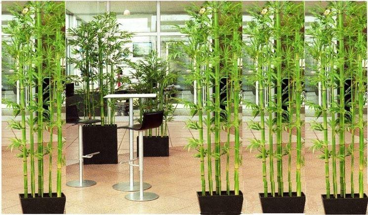 Piante ornamentali finte piante finte caratteristiche for Vendita piante da giardino